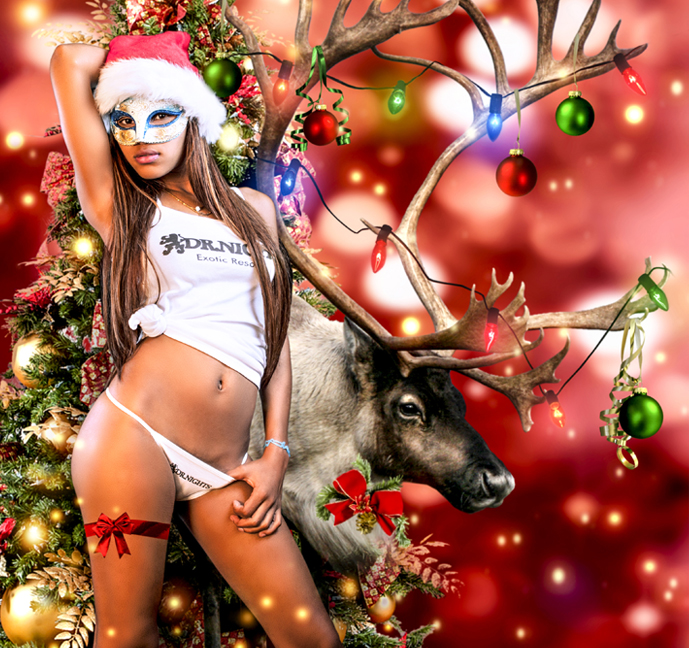 merry christmas 2014 dr.nights exotic resort